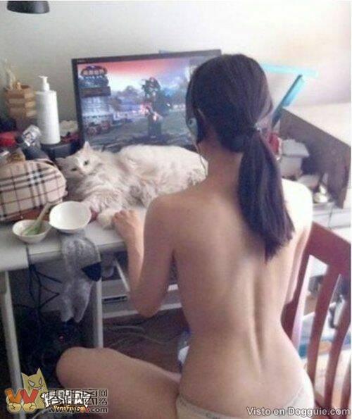 玩网络游戏_